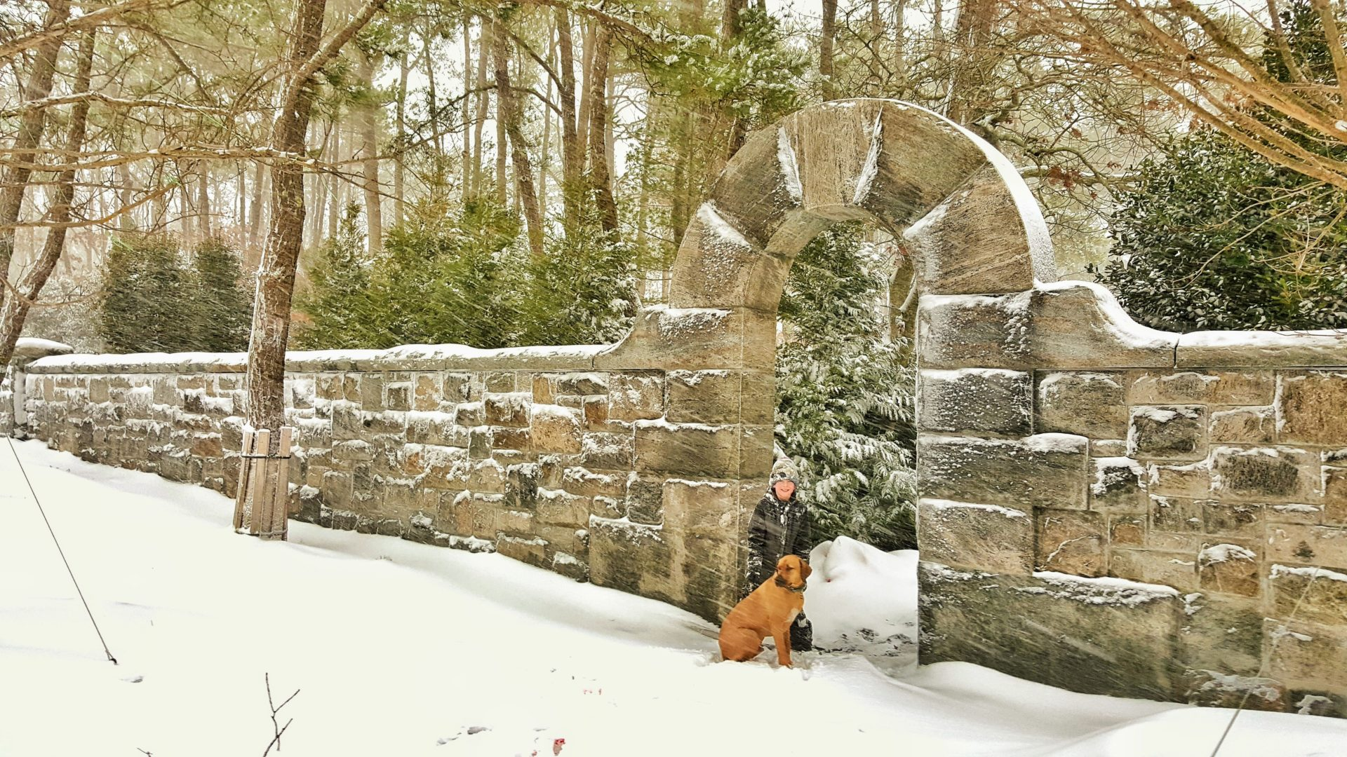 A Boy, His Dog & an Archway in the Snow